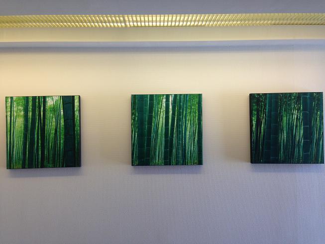竹の絵.JPG